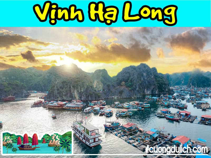 vinh-lan-ha-ha-long