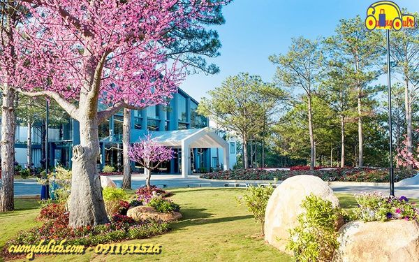Top-10-Khach-san-va-Resort-o-Da-Lat-2019-14